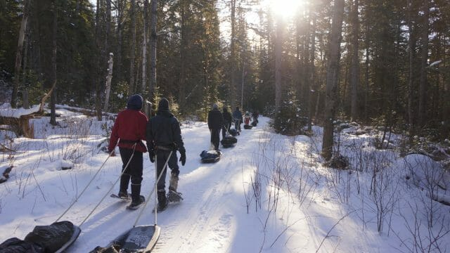 hikers trek through snowy forest