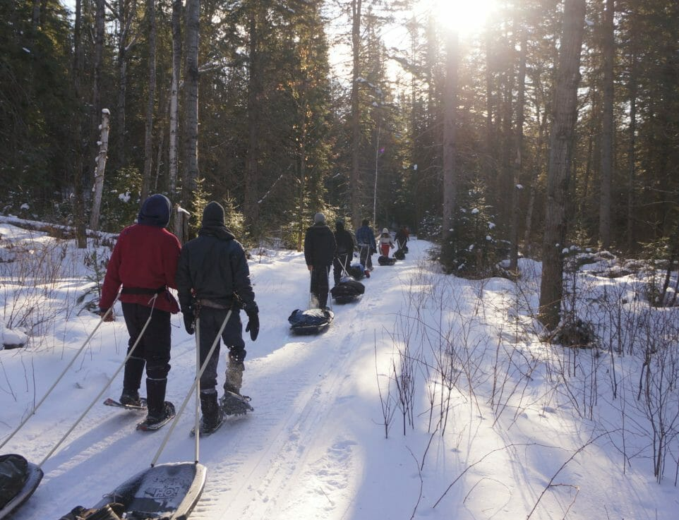 hikers trek through snowy forest