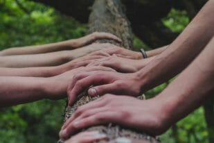 Bursary scholarship hands log nature
