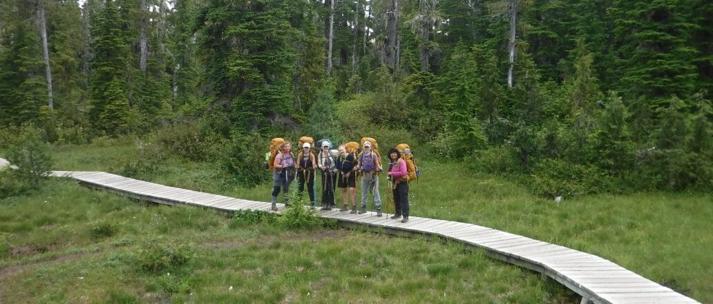 group standing on boardwalk in forest