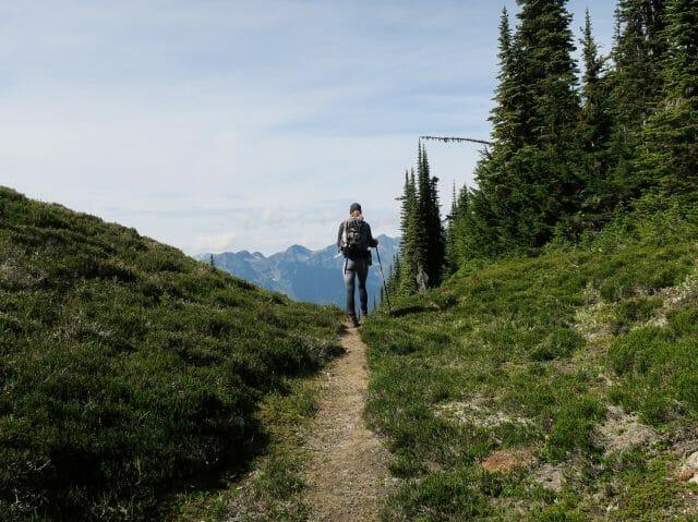 lone hiker follows path