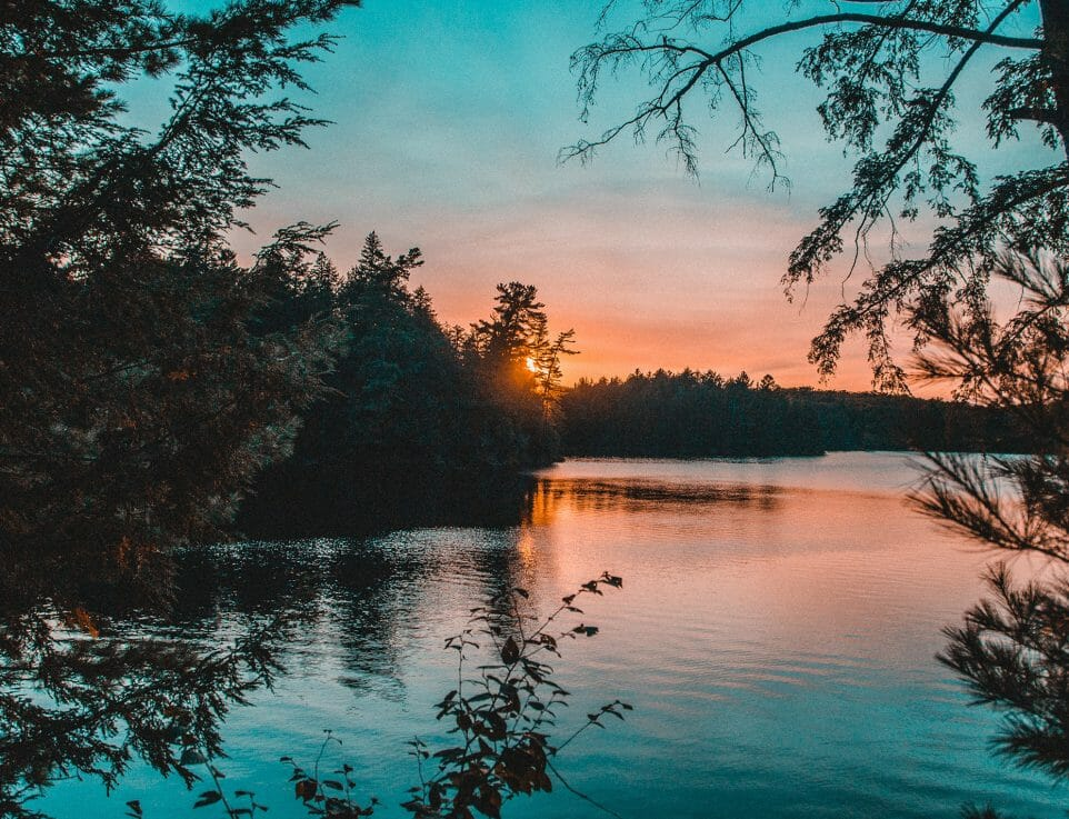 sunset over forest and lake