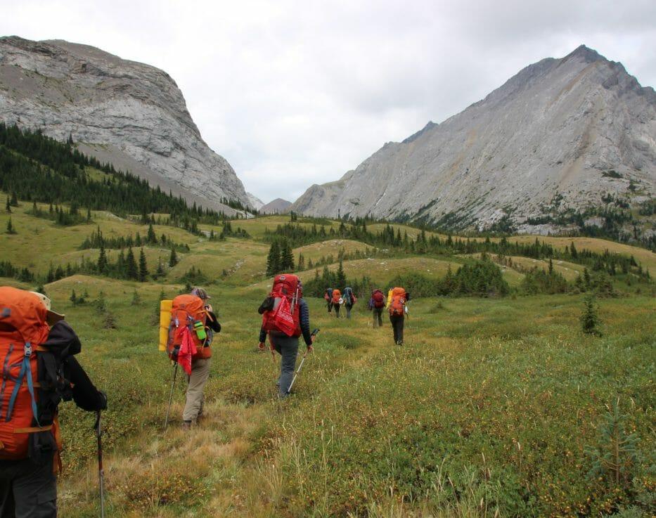 Backpackers walking along trail