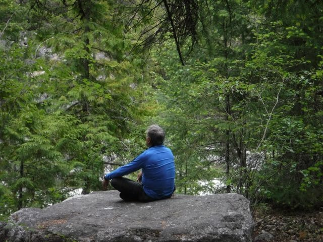 Person facing away from camera sitting on a rock with trees behind them