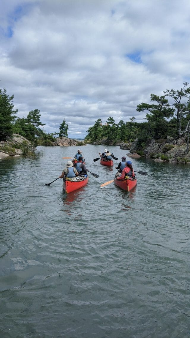 Four red canoes paddling on a lake with wind blown trees and rocks along shore