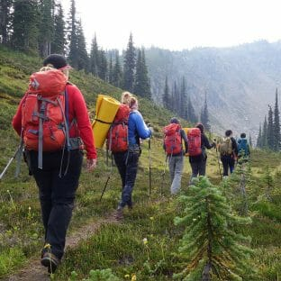 Line of hikers walking through a green meadow with large orange backpacks.