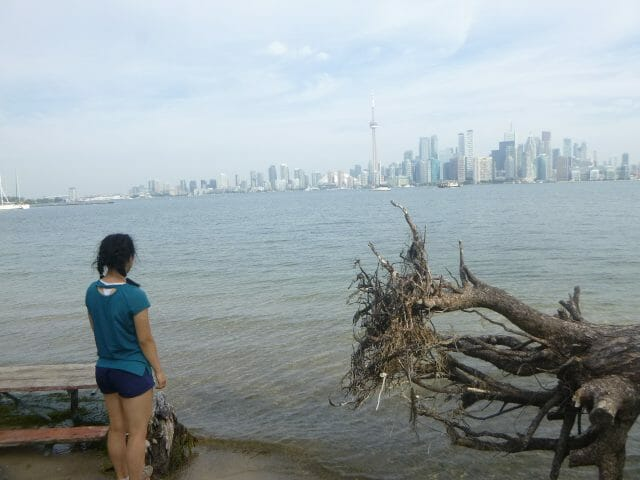 Young person on shore looking at Toronto skyline in across the lake. Old tree toppled over beside them with roots showing